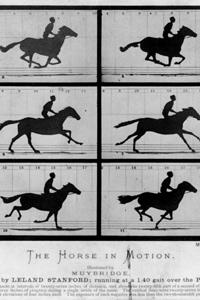 دانلود انیمیشن Sallie Gardner at a Gallop